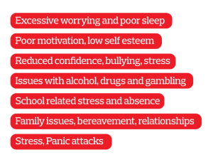 Excessive worrying and poor sleep Poor motivation, low self esteem Reduced confidence, bullying, stress Issues with alcohol, drugs and gambling School related stress and absence Family issues, bereavement, relationships Stress, Panic attacks