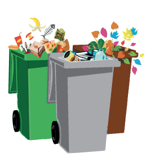 Picture of Wirral bins / waste